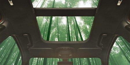 Форд решила вотделке салона использовать бамбук